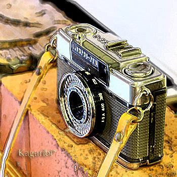 camera1a.jpg