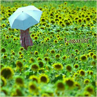 flower76a.jpg
