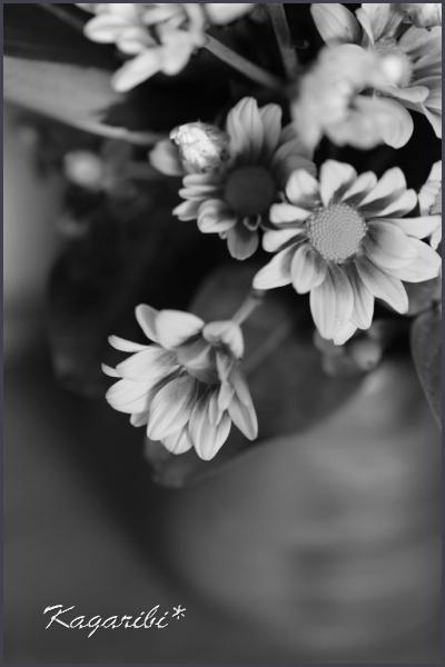 flower90.jpg