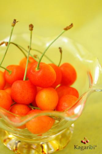 fruits5b.jpg