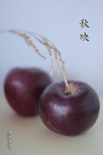 fruits7.jpg