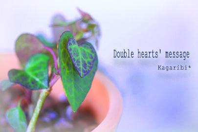 leaf14b.jpg