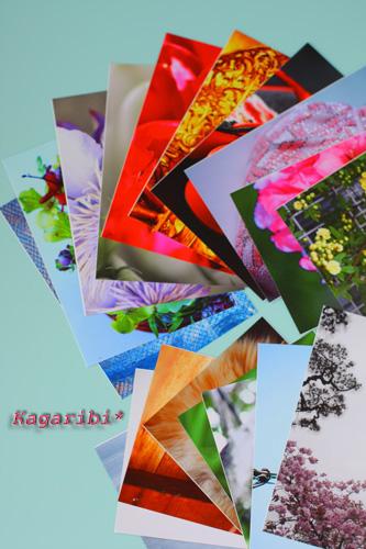p-card1.jpg