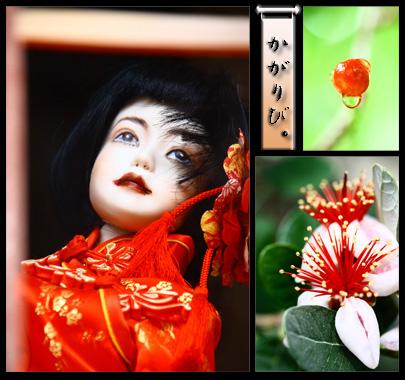 photo10a.jpg