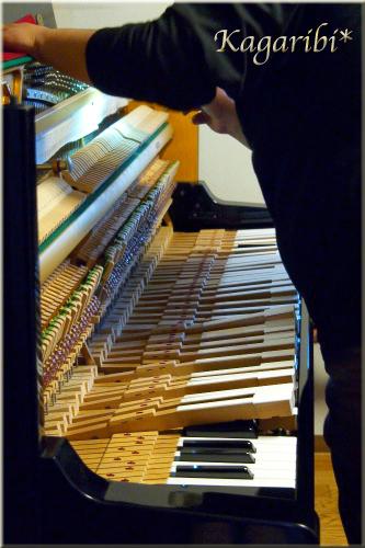 piano2d.jpg