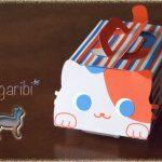 in the cat box
